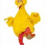 I Am Big Bird Kicks Off Kickstarter