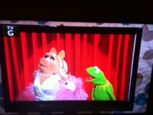 Not The Muppet Show