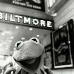 Muppets May Be One Step Closer to Broadway