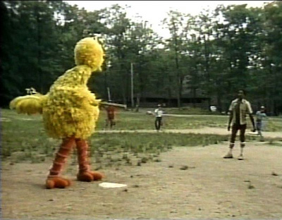 Big Bird baseball