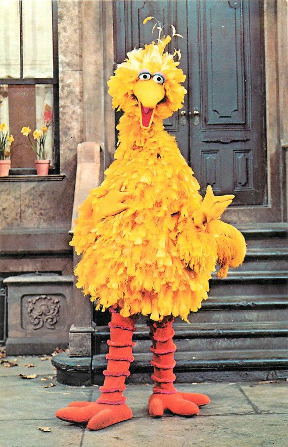 Big Bird on Sesame Street