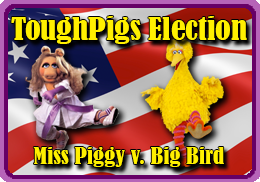 ToughPigs Election!