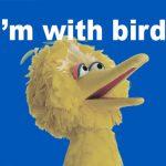 ToughPigs Election 2016: I'm With Bird